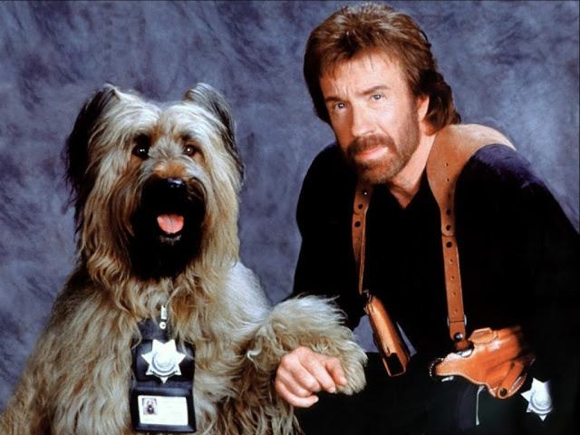 Chuck Norris jokes , Top 20 Chuck Norris jokes