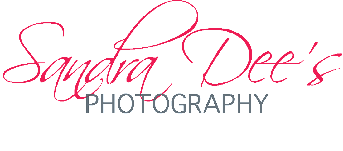 Sandra Dee's Photography