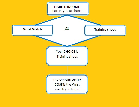 importance of opportunity cost in economics