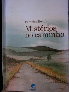 Um livro que Vale à Pena Ler!!