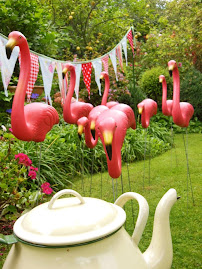 Flamingos for hire (click birds)