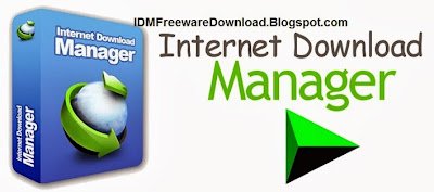 Internet Download Manager 6.18 Build 11