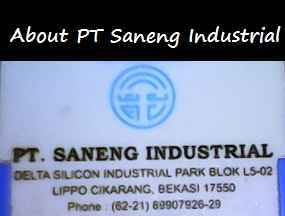 About PT Saneng Industrial