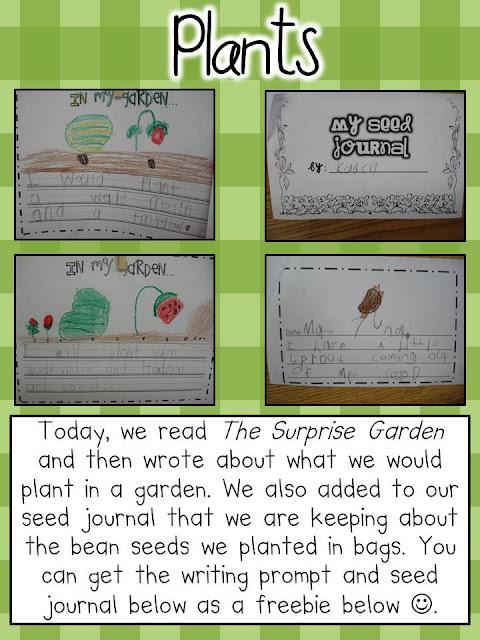 Buy an essay plants