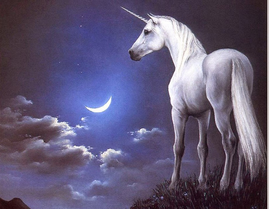 unicornio
