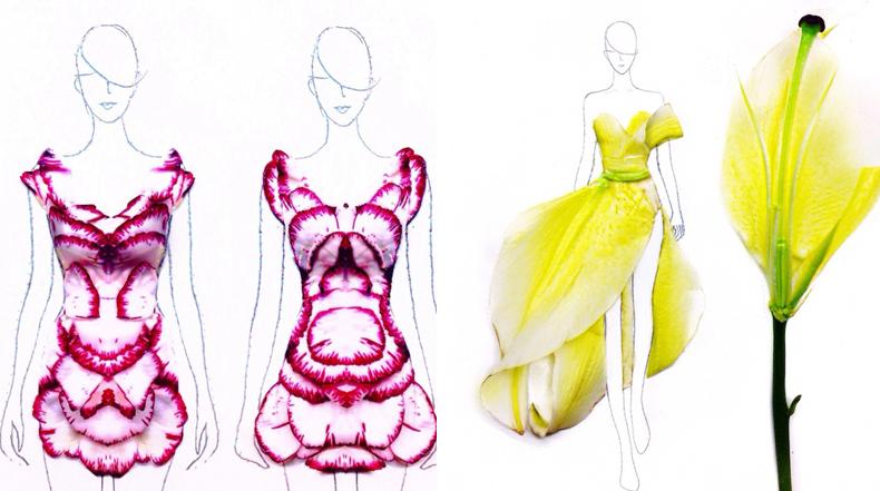 Ilustraciones fashion esbozado con pétalos de flores reales