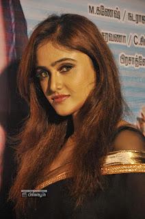 En-Oviya-Heroine-Sony-Charishta-Stills-at-Movie-Audio-Launch