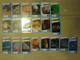 dubluri carti de joc animale marine de la Mega Image