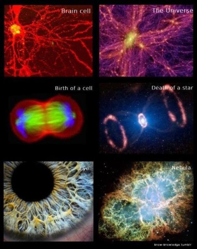 Observable Universe Jesus