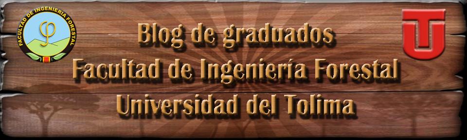 Blog de graduados F.I.F Universidad del Tolima