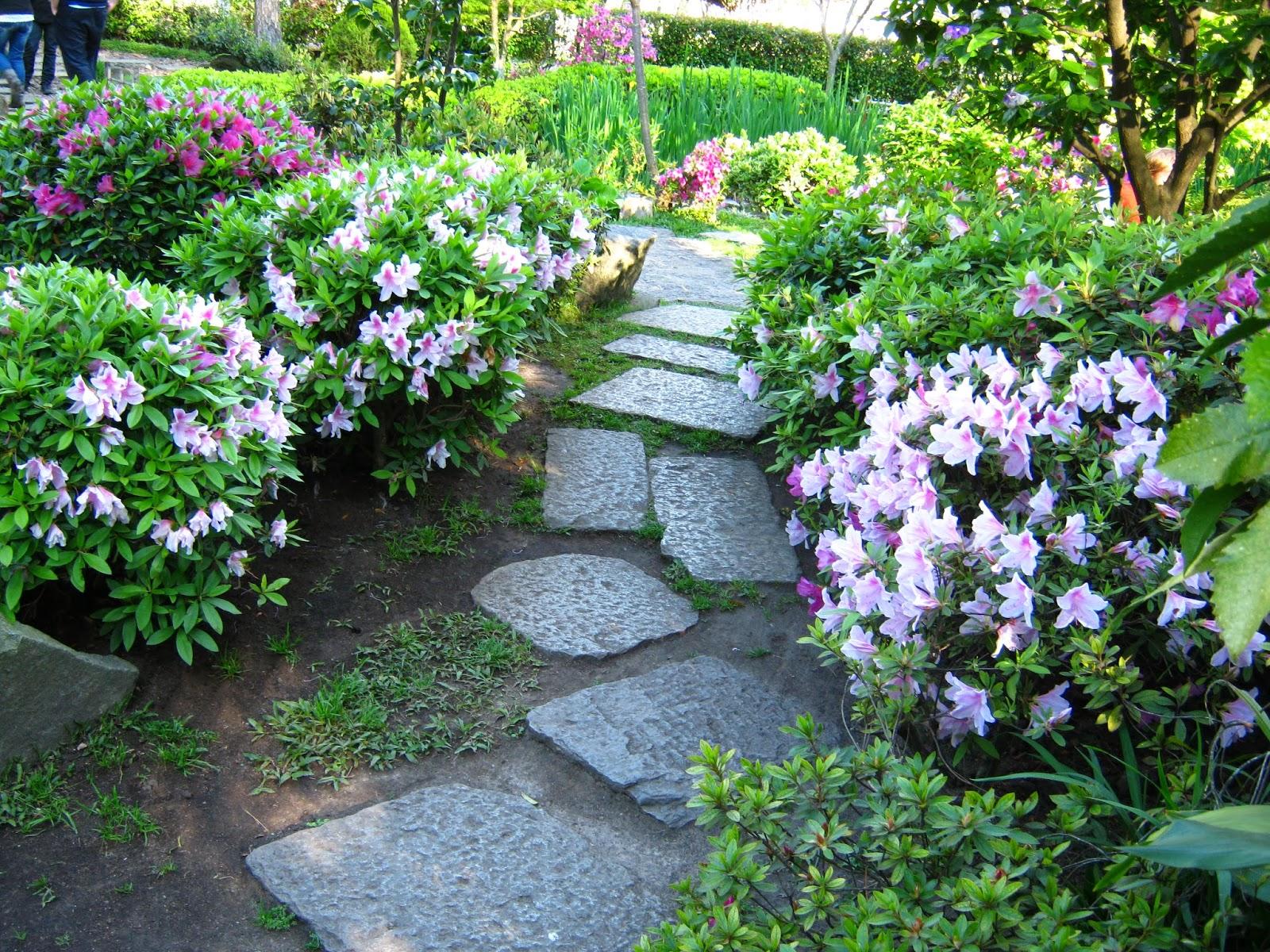 Fotos uruguay jardin japones montevideo for Caminos en jardines