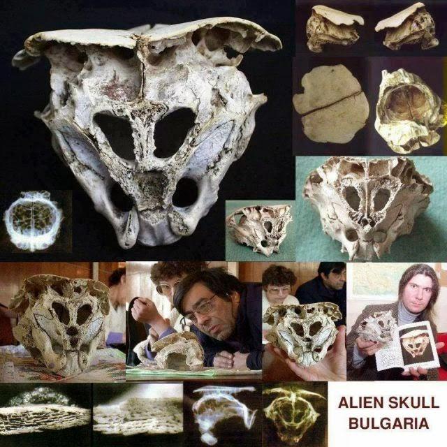 Alien-bulgaria-craneos-enigmas