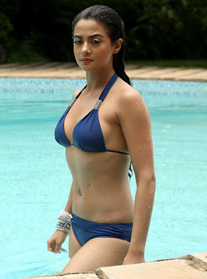 Surveen Chawla Hot pictures