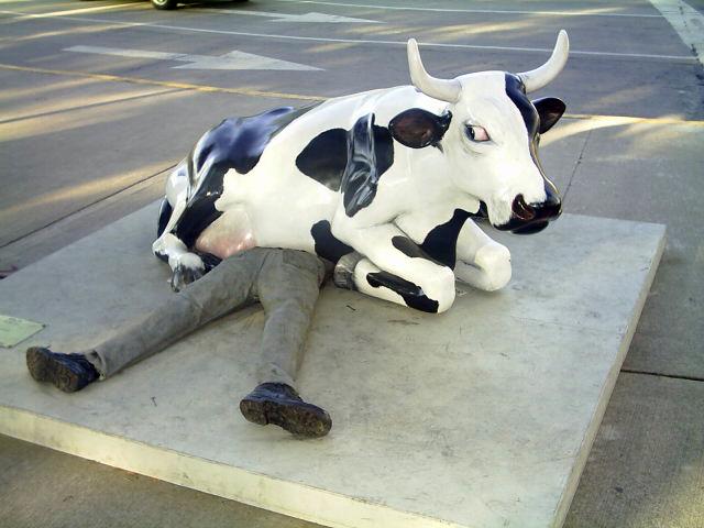 Consultorio de Monstrua 7 vaca