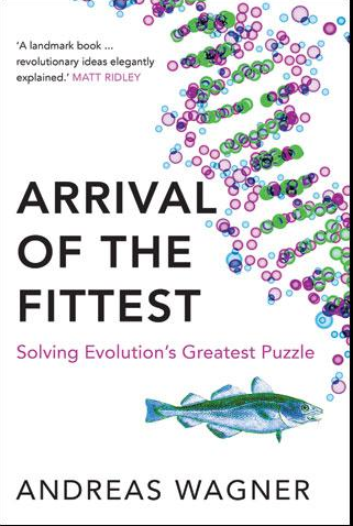 The Four Important Components Of Evolution By Natural Selection