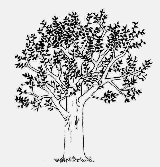 Marabunta Tips Psikotes Menggambar Pohon Manusia Dan Manusia Pohon Rumah