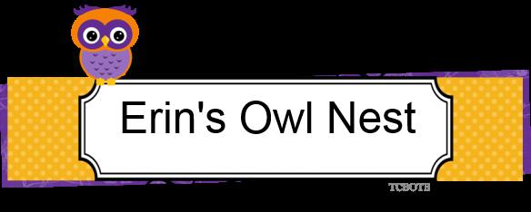 Erin's Owl Nest