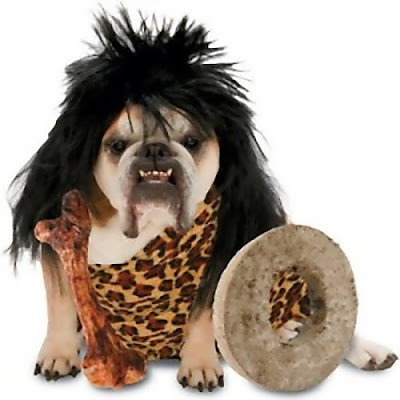 12 Creative and Unusual Dog Costumes (12) 9