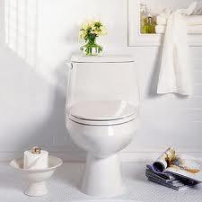Como limpiar un inodoro facilmente