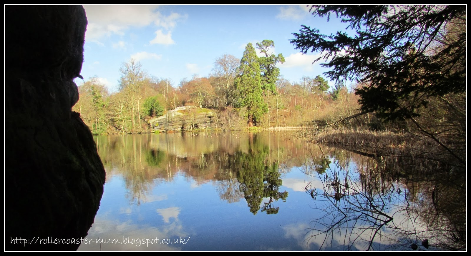 woodland adventures, lake reflections, Lake Wood, Woodland Trust