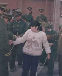 Liu Jinfeng