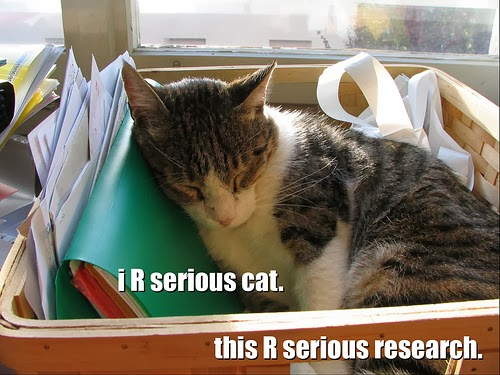 iR serious cat. this R serious research.