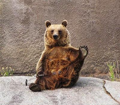 beruang santra3