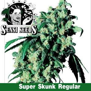semillas de marihuana baratas,  mejor marihuna, skunk