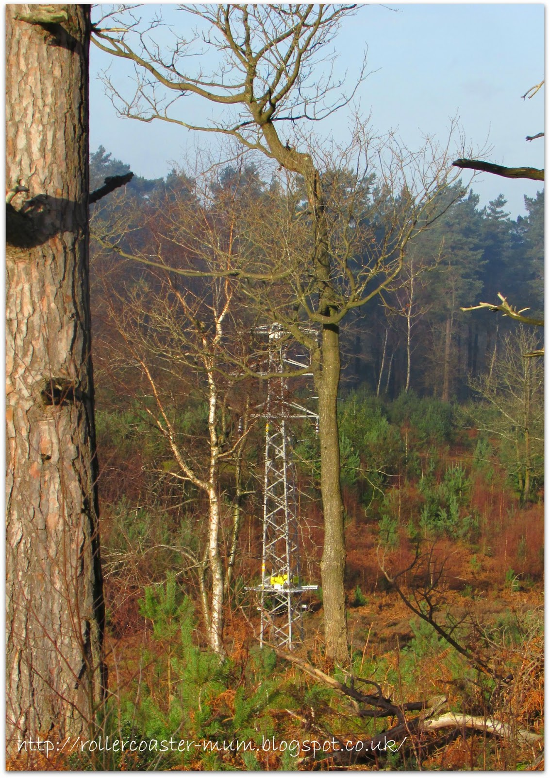 electricity pylons, National Trust Devil's Punch Bowl, Surrey Hills