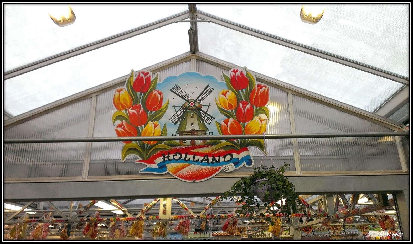Marché aux Fleurs, Amsterdam tulipes