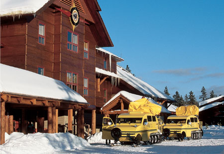Funny freast national park lodges for Yellowstone log cabin hotel