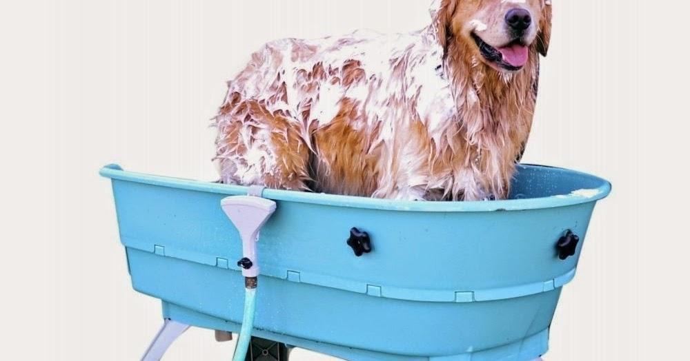 Designer Dog Bed Tartan