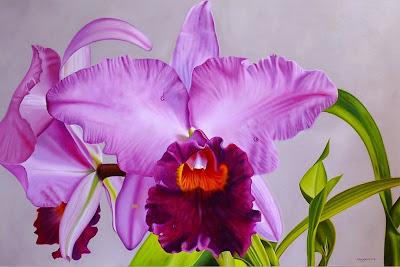 modernas-flores