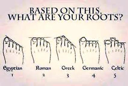 vad heter tårna på foten