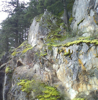 Rock Wall near the Road around Harrison Lake