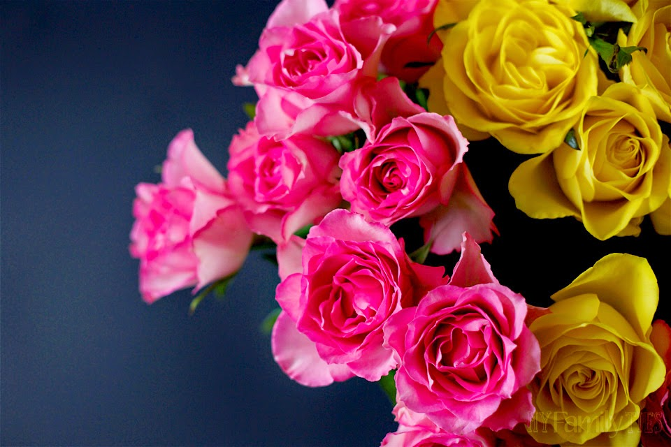 Pink and Yellow roses against a black background