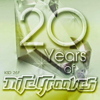20 years of nite grooves 2014 baixarcdsdemusicas 20 Years of Nite Grooves