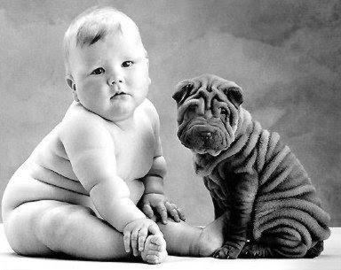 womax mundo verde,informações sobre womax,composição womax,bula womax,emagrecedor womax,emagrecer,emagrecedor,perder peso,saúde,bem-estar,qualidade de vida,vida saudável,extratos de plantas,gordura corporal,Fortalecer as unhas e os cabelos,Melhorar a elasticidade da pele,Fornece colágeno para a pele,Acelera o metabolismo,Elimina a gordura localizada,Elimina a celulite,Sem efeito rebote,anti-inflamatório,Elimina a retenção de líquidos,totalmente natural