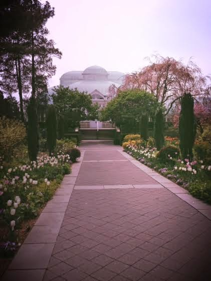 New York Botanical Gardens, what to see in NYC, beautiful spaces New York City, outdoors in New York