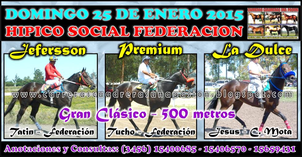 FEDERACION - CLASICO 500