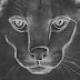 Ouça na íntegra 'Caracal', novo álbum do Disclosure