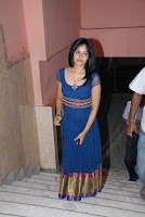 Bindu Madhavi at Pilla Jamindar Movie Platinum