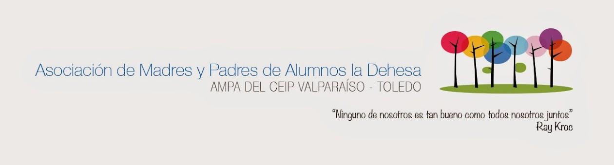AMPA del Colegio Valparaíso de Toledo