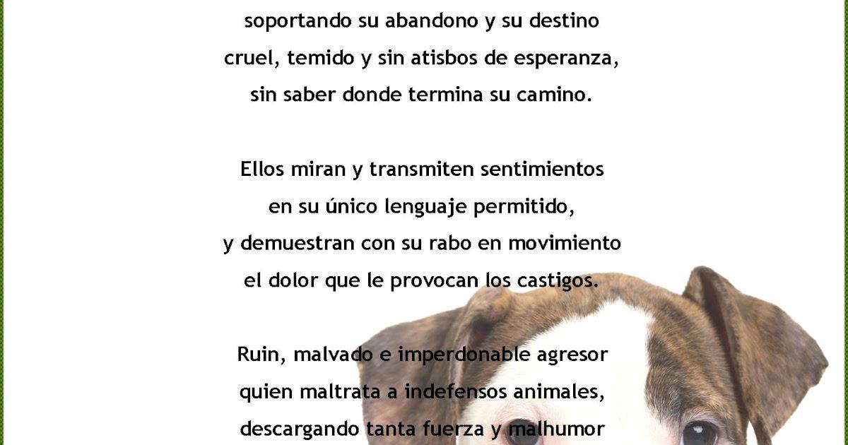 Palabras, Poesías y Versos con Rima: Maltrato Animal