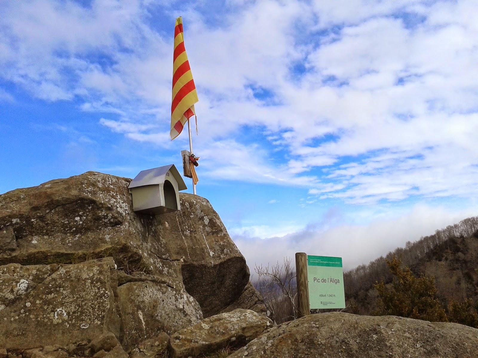 Puig de l'Àliga (El repte dels 100 cims)