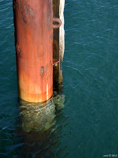 morning - sea green and rust