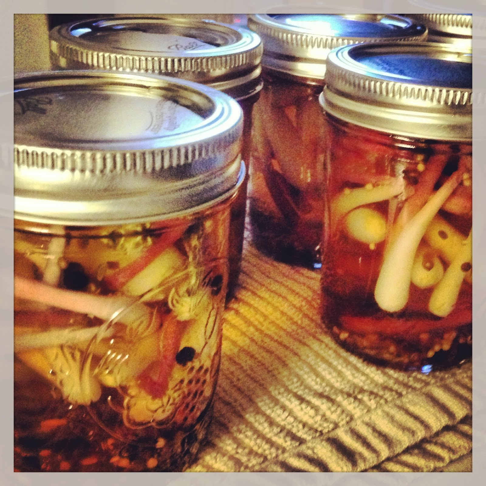Foggy Mountain Meanderings: Canning