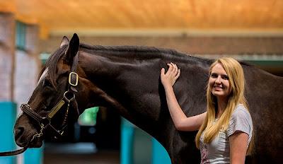 tiznow, tiznow horse, tiznow stallion, tiznow winstar farm, tiznow breeders cup, tiznow breeders cup classic, tiznow classic