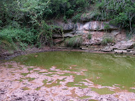 Detall de la Bassa de Bussanya