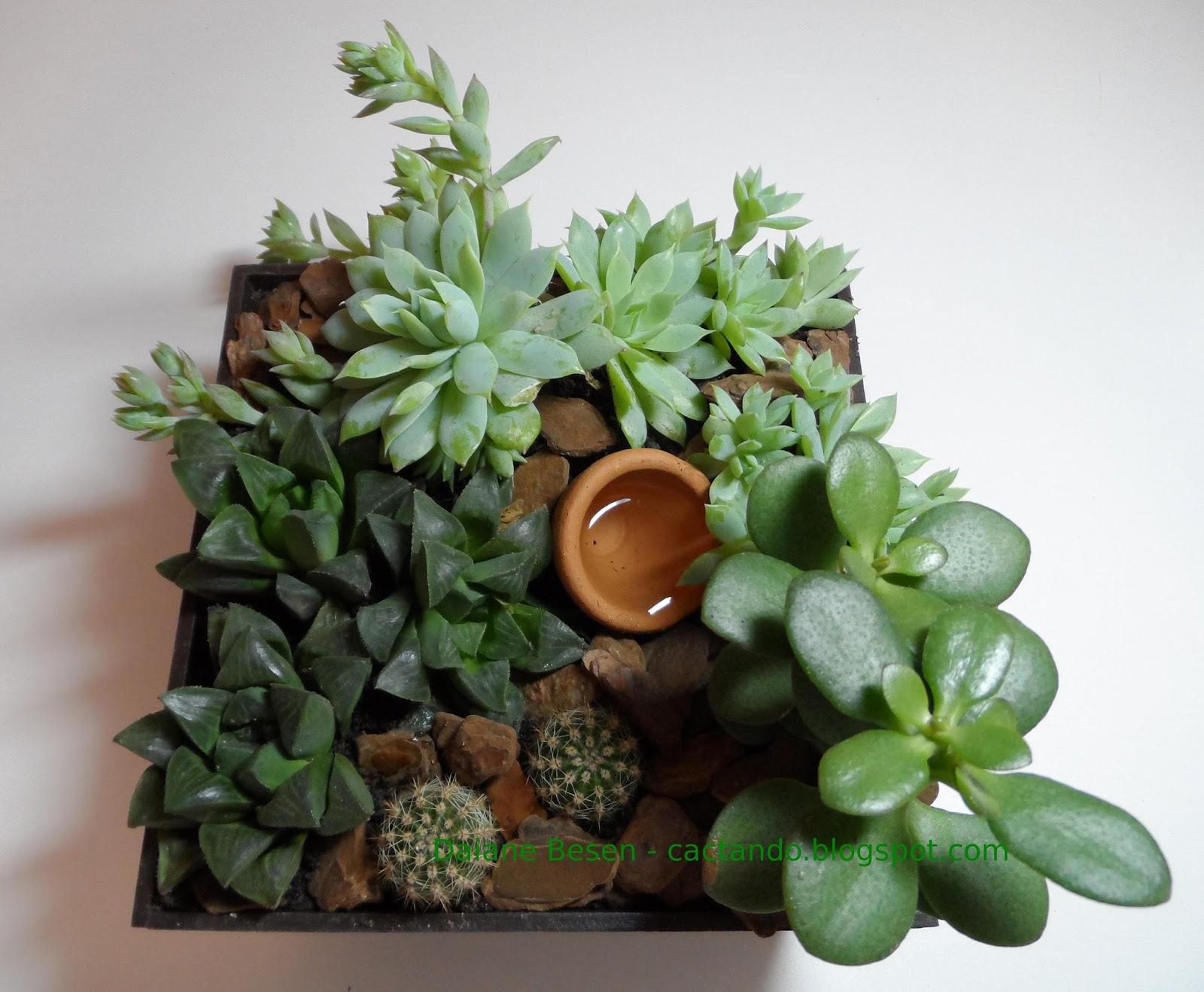 Mini jardim feito por encomenda Para a sala de um apartamento de